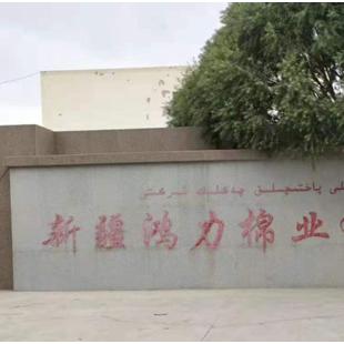 沙雅县新疆鸿力棉业有限公司超低氮燃气锅炉项目