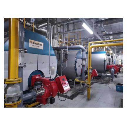 新疆低氮燃气锅炉
